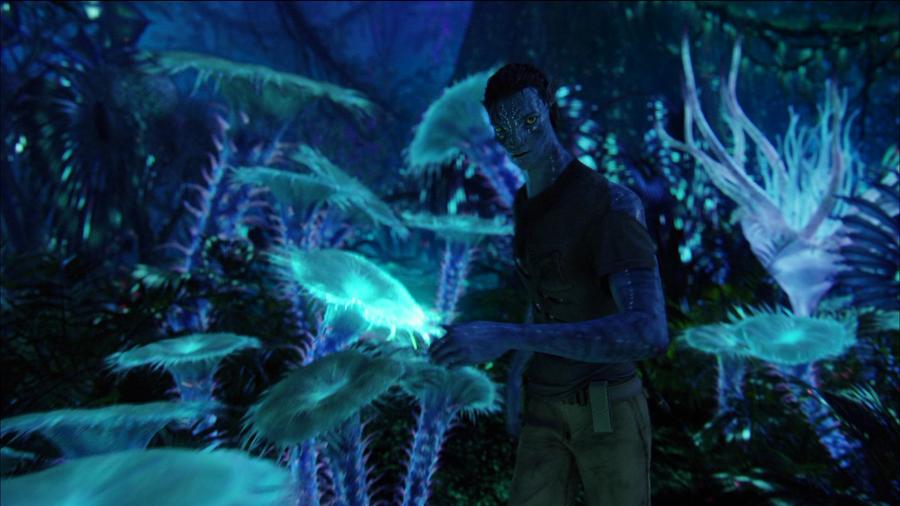 Avatar en imagenes Bioluminescence_2_HD