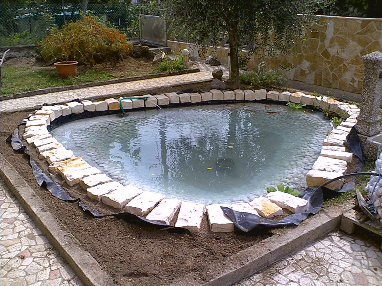 Il laghetto la costruzione di un laghetto dalla a alla z for Filtro vasca pesci
