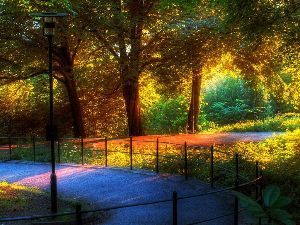 http://2.bp.blogspot.com/-LU0IXtHWU4A/TWEJ36VjUuI/AAAAAAAABdo/LiafI2b7qxs/s1600/Last-sunlight-in-the-park.jpg