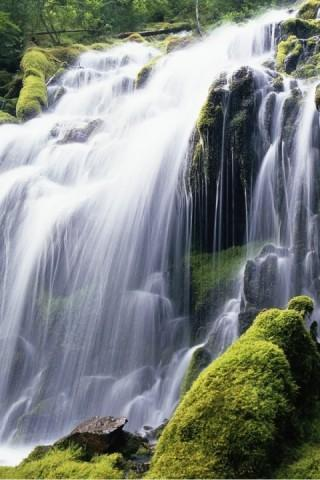 The Best Of Nature Wallpaper For Android Phone