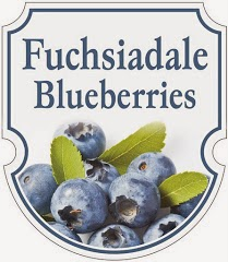 Fuchsiadale Blueberries