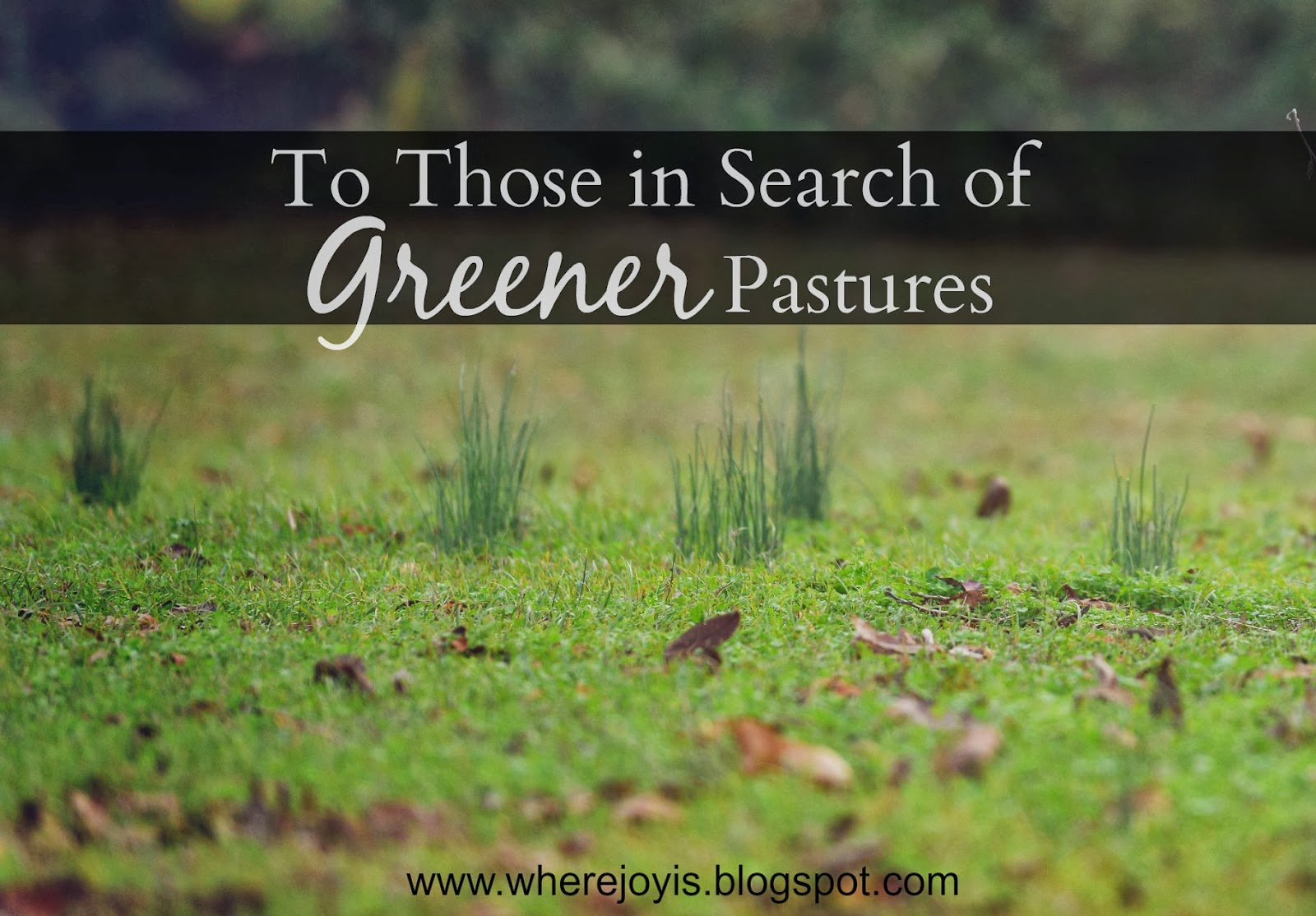 Greener pastures - Idioms by The Free Dictionary