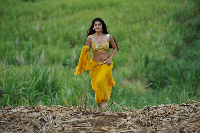 tapsee new spicy saree in mogudu glamour  images