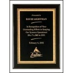 http://www.naptownetching.com/plaque-awards/
