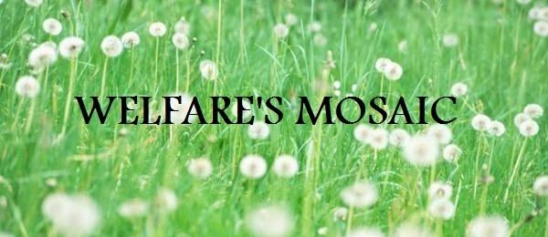 Welfare's Mosaic