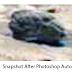 NASA Curiosity Photographed Humanoid Skull On Mars