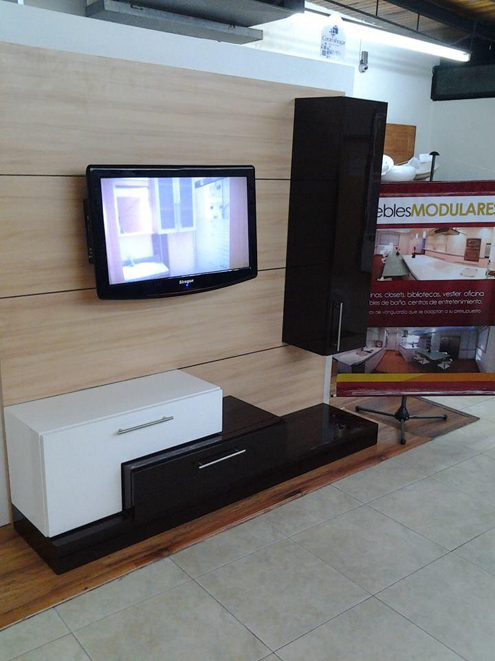 Fabricaci n y dise o de centros de entretenimiento for Disenos de modulares modernos