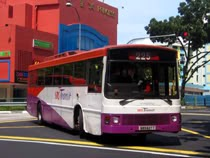 bus to butterworth