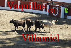 VAQUILLAS EN VILLAMIEL
