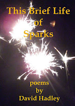 This Brief Life of Sparks
