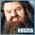 I like Rubeus Hagrid
