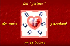 Les amis Facebook en 15 leçons