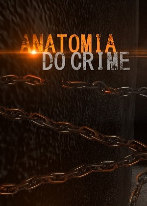 Anatomia do Crime - 2ª Temporada Séries Torrent Download capa