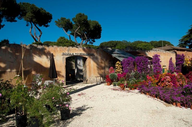 niwabox design trasparente giardini in vasi moderni in plexiglass