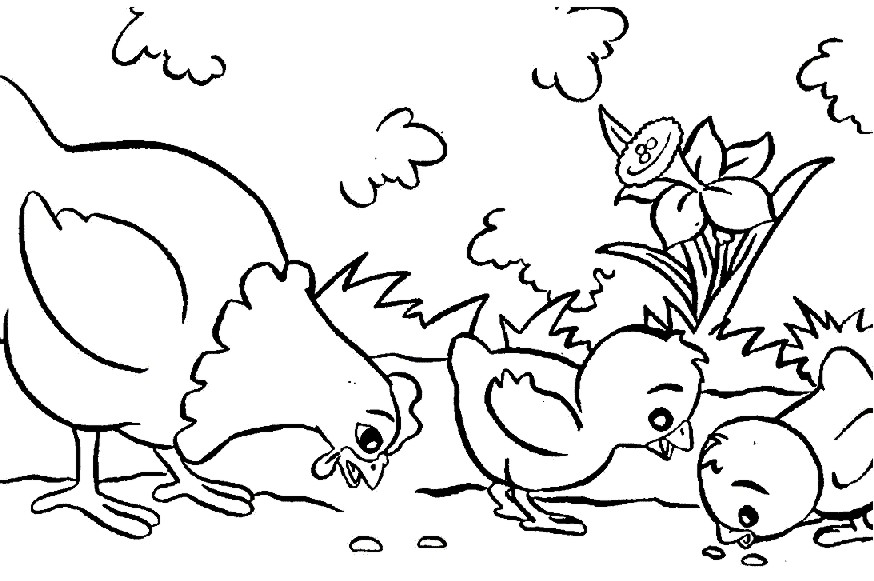 BAL DE COLOREAR Colorear dibujos Gallinas con pollitos
