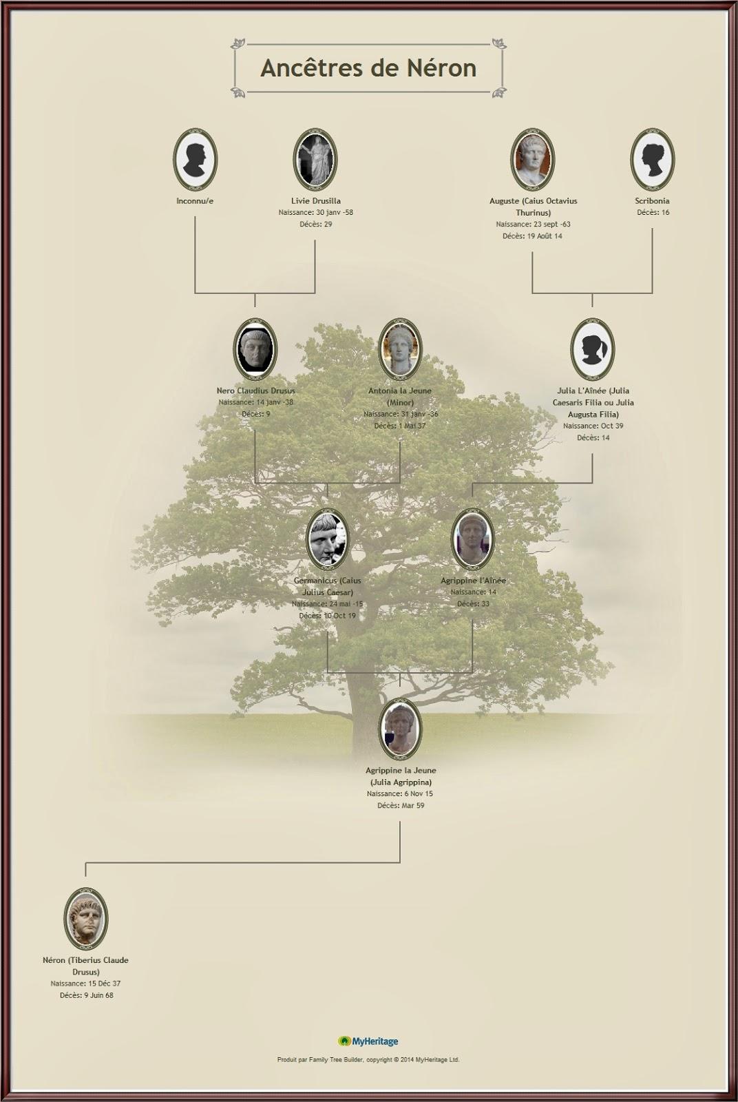 arbre genealogique. Black Bedroom Furniture Sets. Home Design Ideas