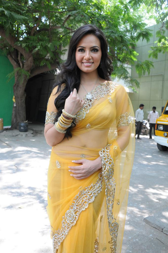 Sana Khan Latest Photos In Saree Tollywood Stars