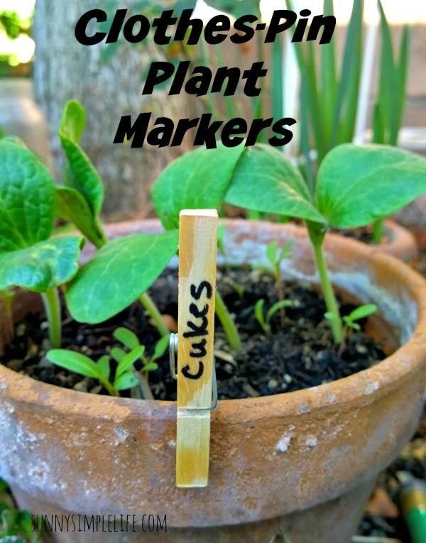 frugal gardening, DIY easy plant marker