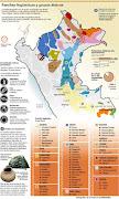 lunes, 19 de marzo de 2012 (mapa linguistico del peru)