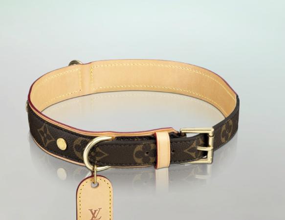 Louis Vuitton Inspired Dog Collar