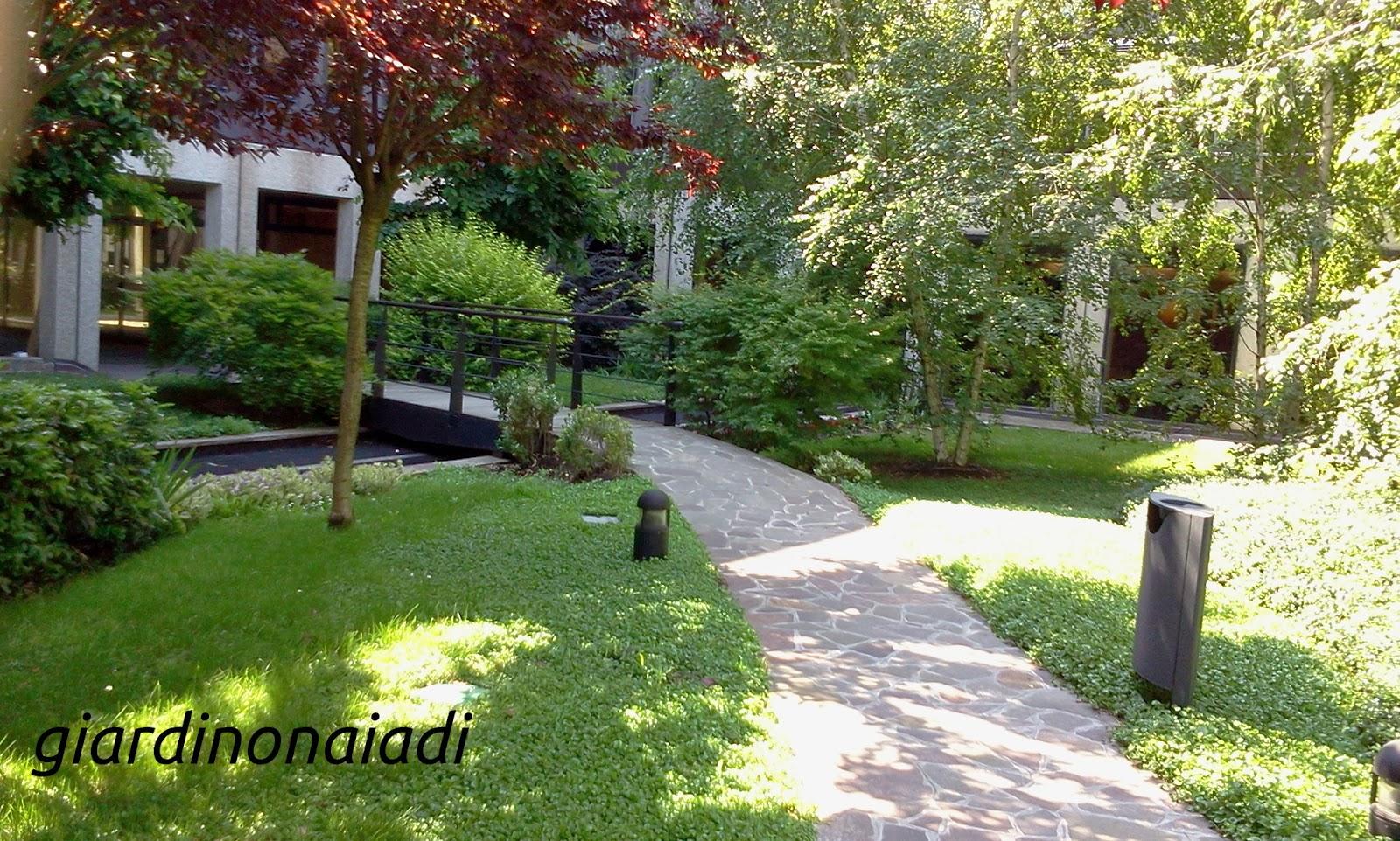 Il giardino delle naiadi due passi in giardino prima parte - Giardini di villette ...