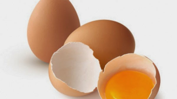 Egg Shell In Dog Food