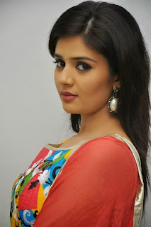 Actress Sree Mukhi Pictures in Salwar Kameez at Prema Ishq Kadhal Audio Success Meet Function  0013