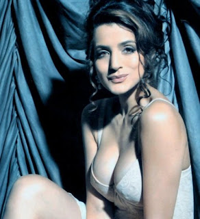 Sexy Bollywood Actress Amisha Patel Bikini Photos  Hot Wallpaper And