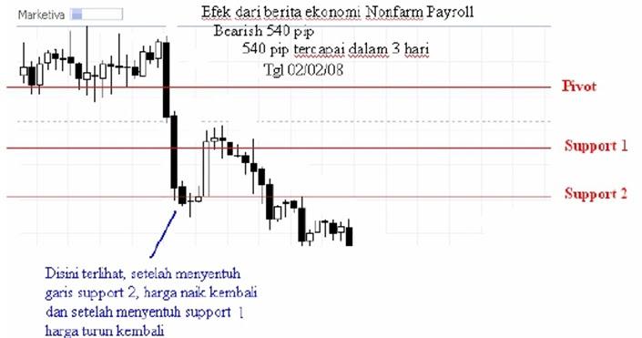 Belajar forex trading pemula
