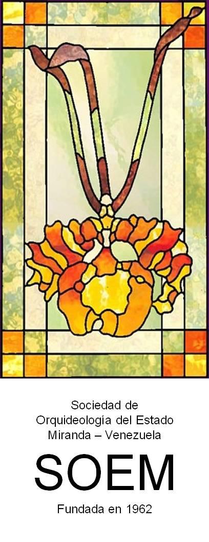 Logo SOEM