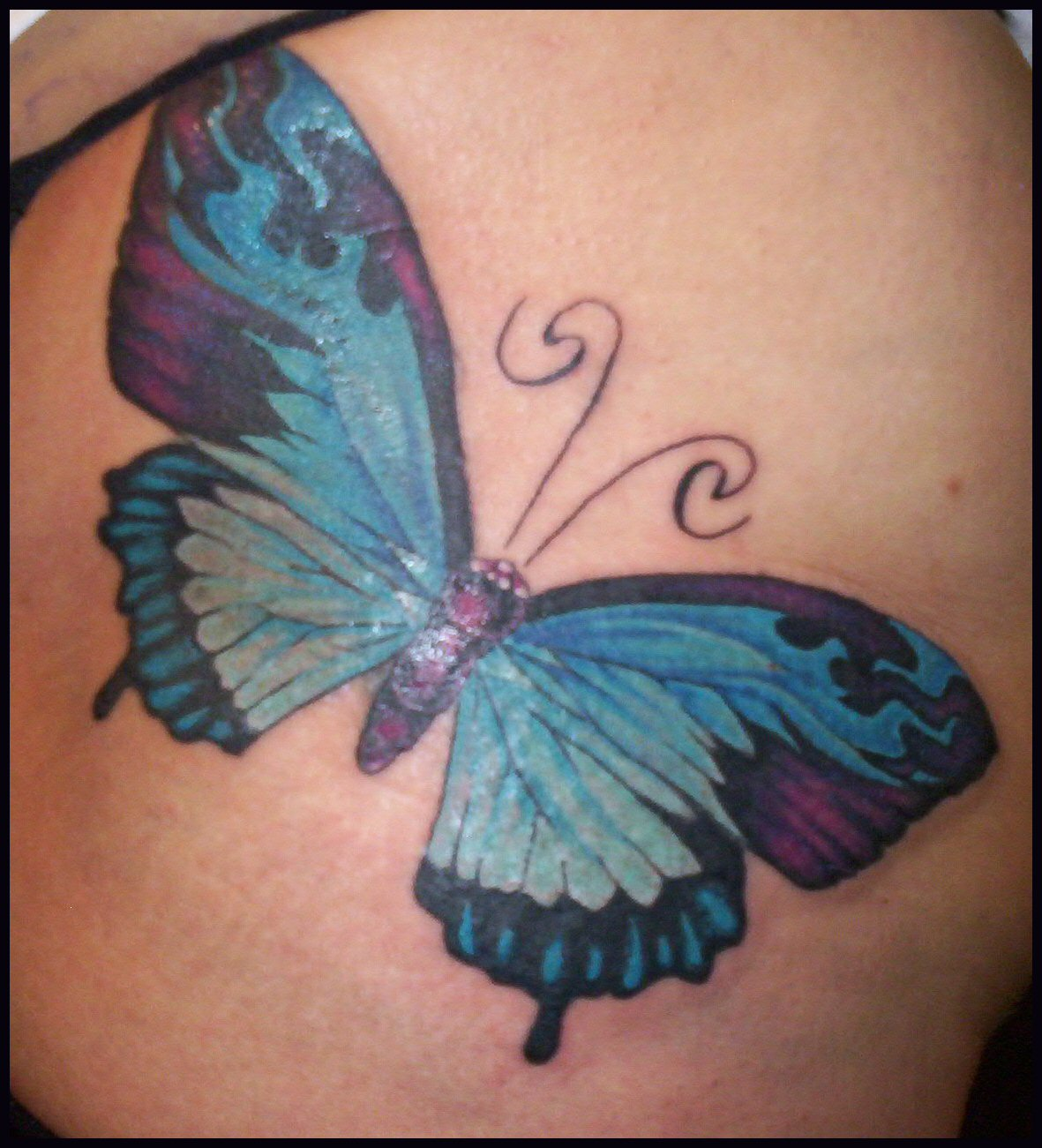 Butterfly tattoos designs butterfly tattoos idea home for Butterfly tattoos gallery