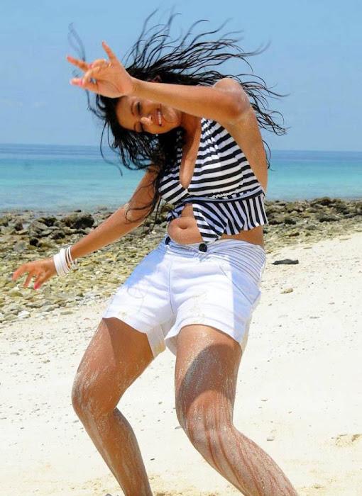 hamsa nandini malayalam spicy actress pics