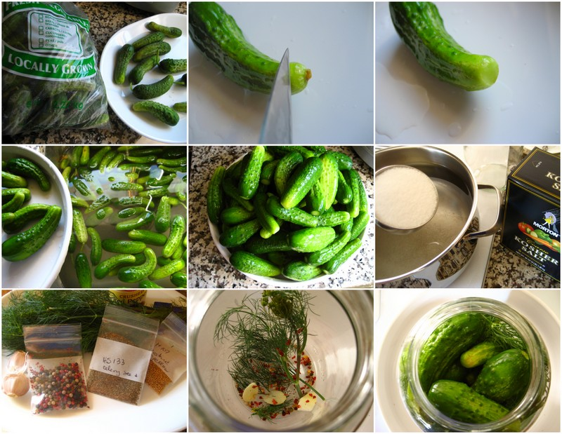 how to make salt brine pickles