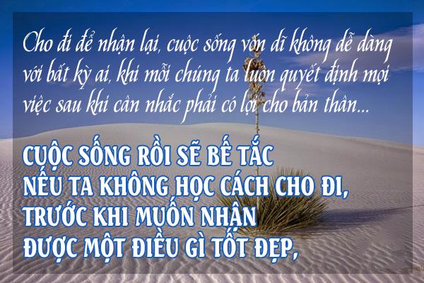 cho-di-va-nhan-lai-niemvuimoingay247