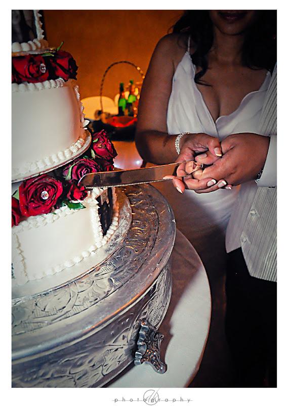 DK Photography Brwyn12 Bronwyn & Garth's Wedding in Paarl  Cape Town Wedding photographer