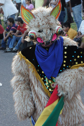 Entradas folkloricas en Bolivia 66