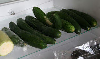 Just a few cucumbers