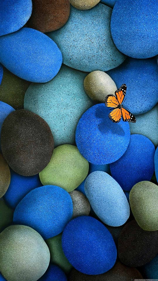 Blue Pebbles Orange Butterfly  Galaxy Note HD Wallpaper