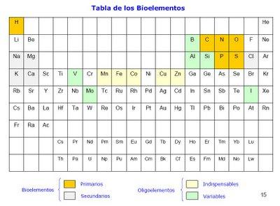 Los elementos qumicos en nuestro cuerpo los elementos qumicos en dicen que estos elementos son importantes y necesarios para vivir tienen propiedades muy importantes y se pueden encontrar en varios alimentos urtaz Gallery