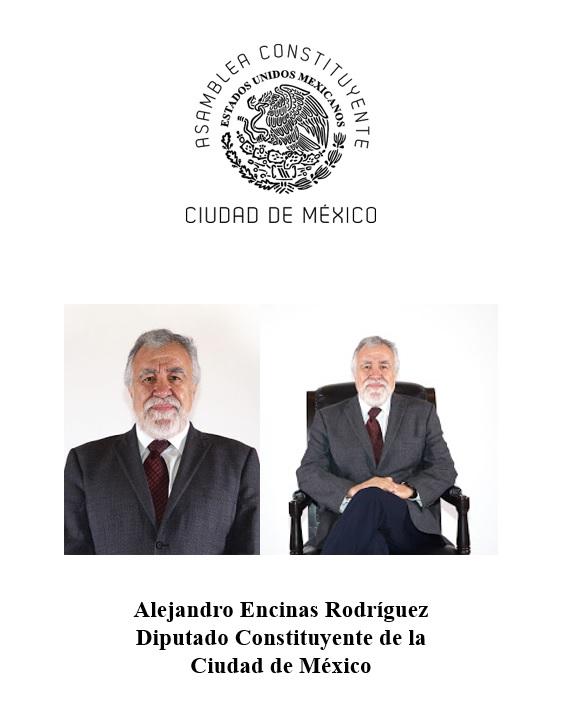Diputado Constituyente de la Ciudad de México