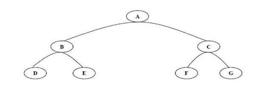 ilustrasi pohon binary options