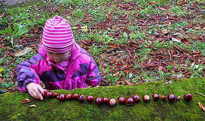 Kastanjer, Châtaignes, Chestnuts by Guillaume Baviere / flickr (CC BY 2.0)