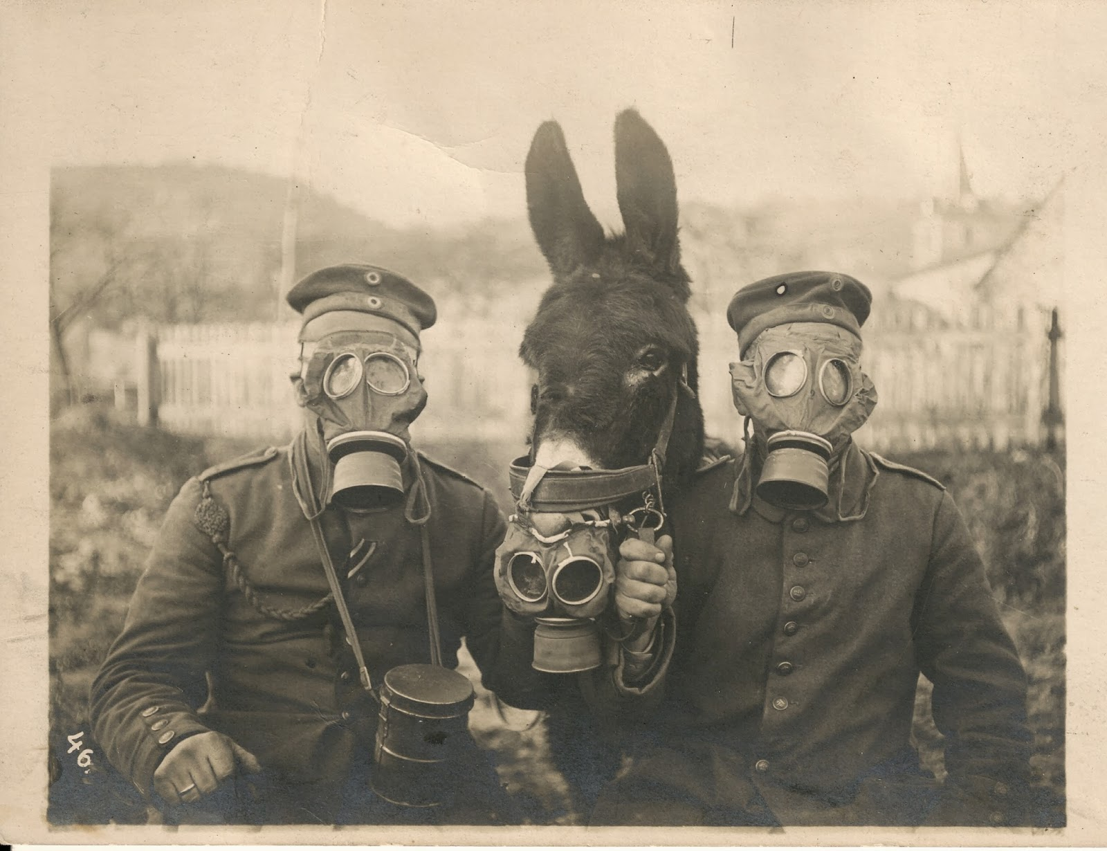 Two German soldiers and their mule wearing gas masks in WWI, 1916