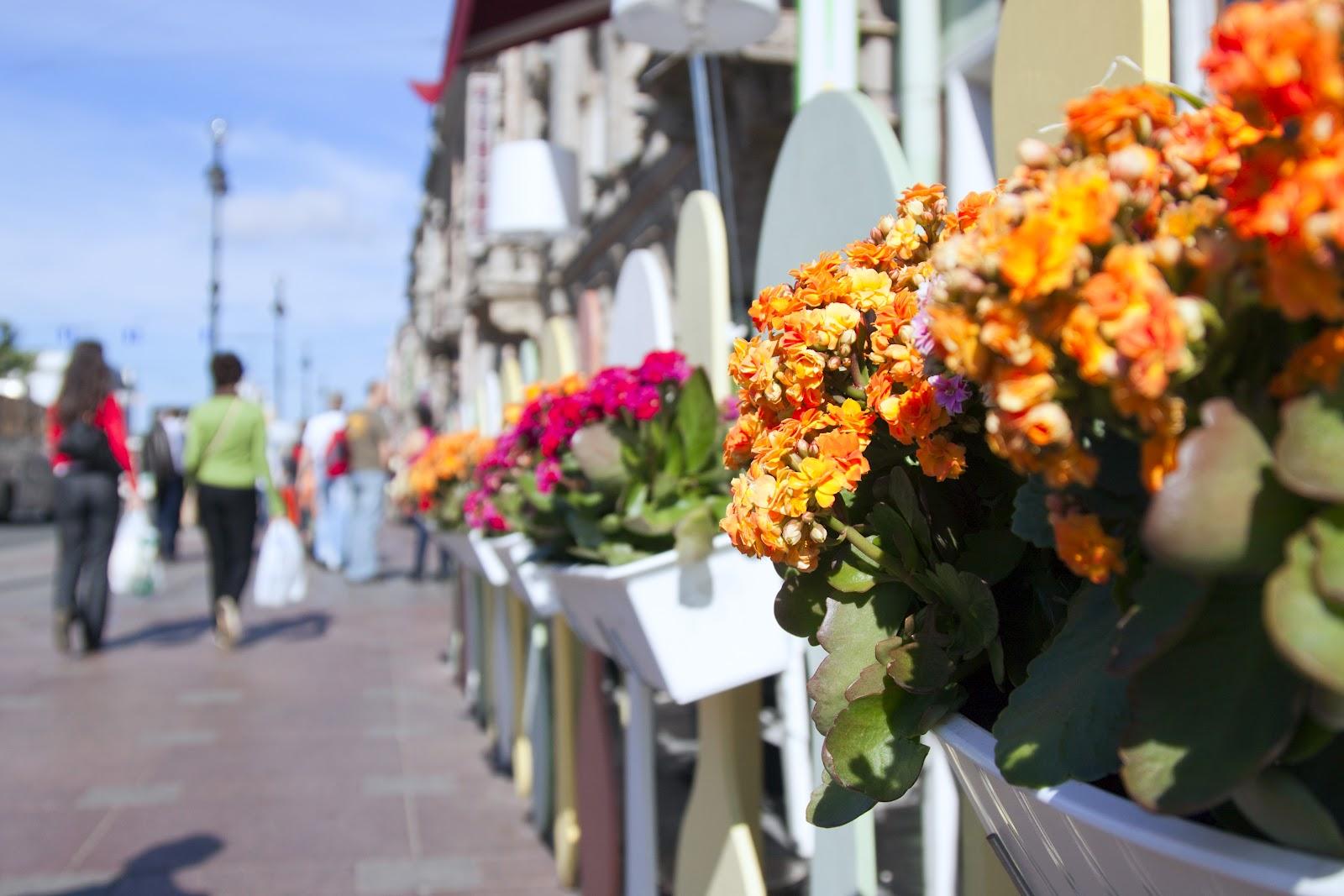Салон цветов Букет-СПБ - адрес, часы работы, фото, отзывы