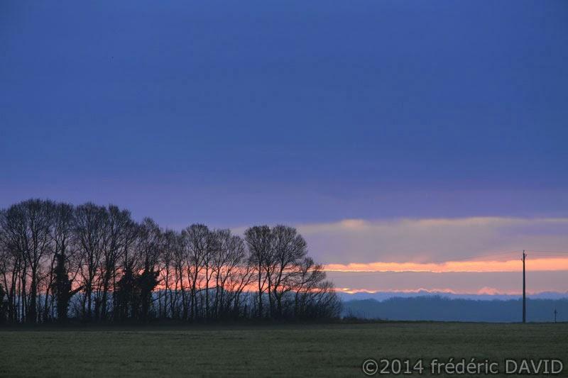 arbres nuages matin champs Sénart Seine-et-Marne
