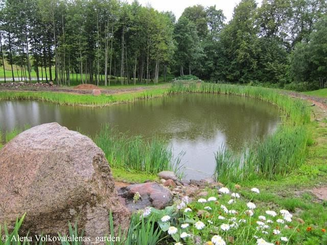корчма в Литве, деревенский стиль, герань в кашпо, растения в подвесных кашпо, деревянный дом, светильник, пруд