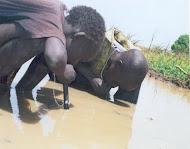 Comemora-se hoje, 22 de Março, o Dia Mundial da Água