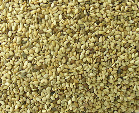 Sesame Seed Export Business in Nigeria