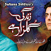 Zindagi Gulzar Hai Watch All Episodes