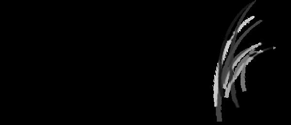 Mimita